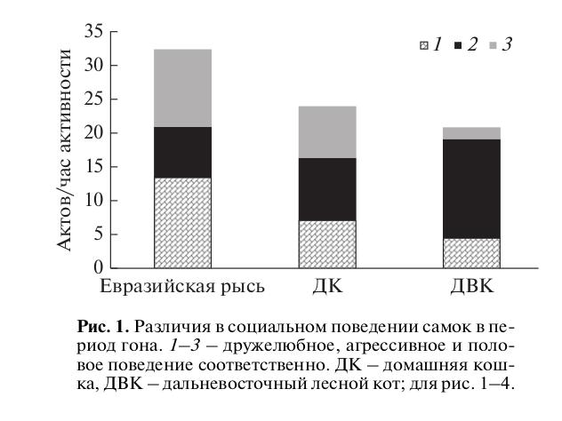Рис. 1. Различия в социальном поведении самок в период гона. 1–3 – дружелюбное, агрессивное и половое поведение соответственно. ДК – домашняя кошка, ДВК – дальневосточный лесной кот; для рис. 1–4.