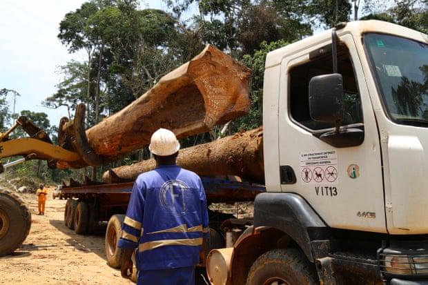 Нарушение девственных лесов в результате вырубки леса, добычи полезных ископаемых, строительства дорог, быстрой урбанизации и роста населения приводит к более тесному контакту людей с дикой природой, повышая риск заболеваний