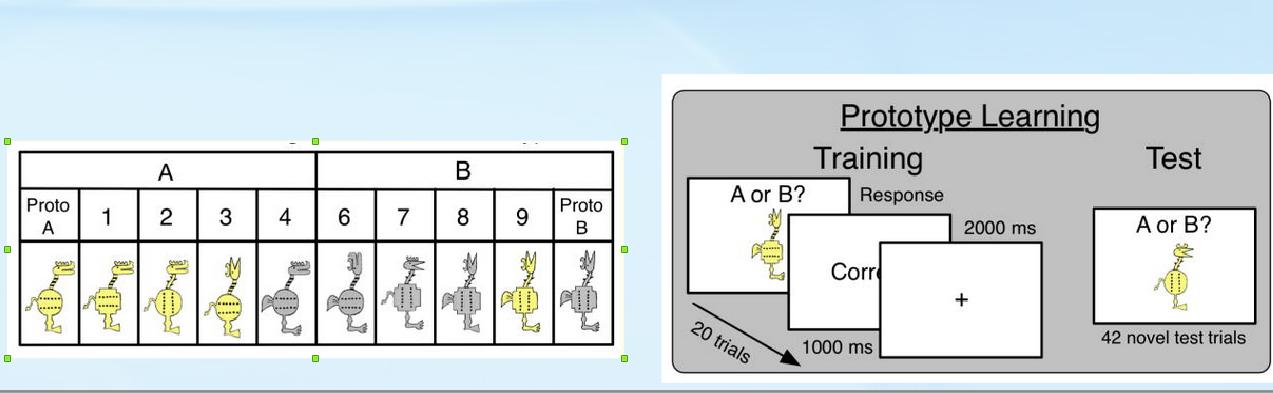 Рисунок 2. Признаки объектов, используемых в задачах на категоризацию, обучение по прототипам и тестирование в работе Görlick et al., 2015.