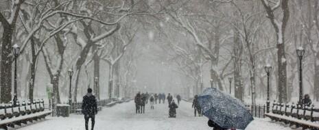 """Обсуждаются """"волны холода"""" и """"волны жары"""" как факторы смертности горожан. Показывается U-образная кривая зависимости смертности от температуры: она минимальна в термонейтральной зоне, определяющейся климатом, в котором находится город, и растёт по выходе из неё в обе стороны. Происходящее потепление климата лишь сдвигает термонейтральную зону, но..."""