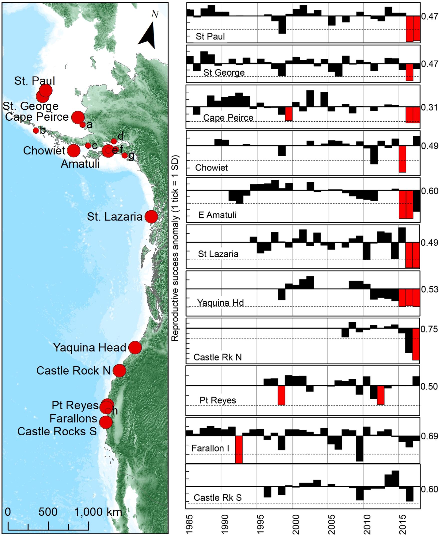 """Годовые стандартизованные отклонения успеха размножения кайр (справа) в постоянно наблюдаемых колониях (слева, большие красные кружки), распределенных по ~ 6000 км линии побережья северо-восточной Пацифики. Красные столбцы (справа) показывают каждый известный год репродуктивной неудачи. Таковой считалось падение успеха размножения ниже 2 стандартных отклонений обычного успеха, т.е. пара в среднем выращивала <0,10 птенца (а многие - и никого) в 1985-2014 гг. Горизонтальные пунктирные линии - падение успеха размножения ниже уровня """"неудачи"""" (справа от каждого графика). Более мелкие и/или нерегулярно наблюдаемые колонии (слева, маленькие красные кружки) включали (a) Round I., (b) Aiktak I., (c) Oil Creek, (d) Duck I., (e) Nord I., (f) Gull I., (g) Barwell Is., (h) Devil's Slide Rock."""