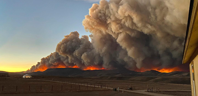 Природа в 2020 году совсем не очистилась — глобальные изменения климата продолжают напоминать о себе.