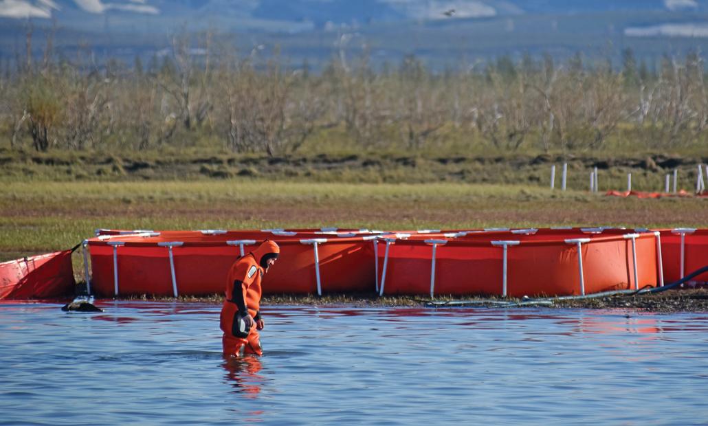 Рабочий принимает участие в ликвидации последствий утечки топлива на севере России.