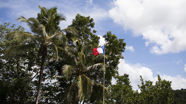 Гвиана остается французской колонией. Возможно поэтому, леса здесь сохраннее, чем в Бразилии (как и в Венесуэле - наследие Чавеса!), хотя Франция и управляет Гвианой по-колониальному, не как своей территорией. Однако правительства вроде бразильского своей страной и людьми управляют значительно хуже