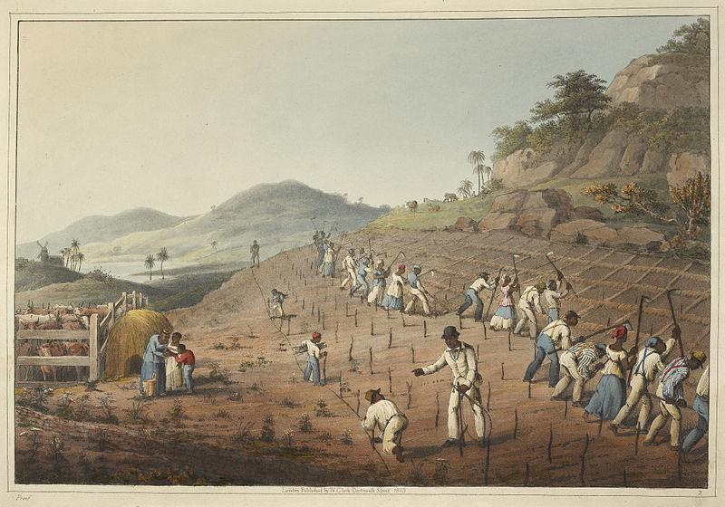 Рабы в британской колонии Антигуа, 1823 г.