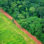 Картирование разрушений биосферы «потребительским классом»