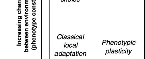 """СТЭ лучше расшифровать как """"стандартная теория эволюции"""": до настоящего синтеза там далеко, и сейчас разные авторы пробуют дополнить еë аспектами, упущенными — или совсем неизвестными — при создании СТЭ, но важными для эволюционирования в природе, чтобы действительно двигаться к """"новому синтезу"""". Слишком уж много их в «стандартной..."""