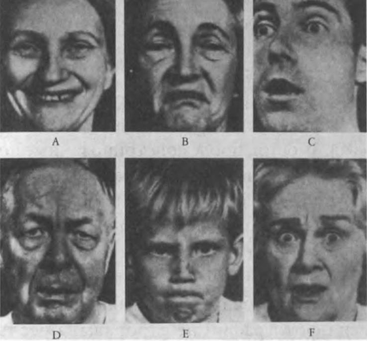 Ил. 14. Эти и подобные им фотографии с разными выражениями лиц демонстрировались испытуемым подряд на протяжении 10-15 секунд. Каждый испытуемый, глядя на фотографию, должен был решить, какое из шести понятий — злость, страх, грусть, отвращение, удивление, радость — более всего к ней подходит. Был получен единый для разных культур результат: А — радость, В — отвращение, С — удивление, D — грусть, Е — злость и F — страх. Из: Ekman Р. Afterword: Universality of Emotional Expression? A Personal History of the Dispute // Darwin Ch. The Expression of the Emotions in Man and Animals. 3rd ed., N. Y., 1998. P. 363-393, здесь p. 376. © Paul Ekman / Courtesy of Paul Ekman/Paul Ekman Group, LLC.